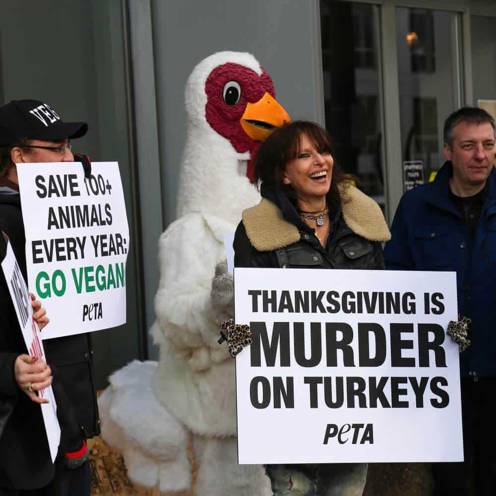 Chrissie Hynde pour PETA