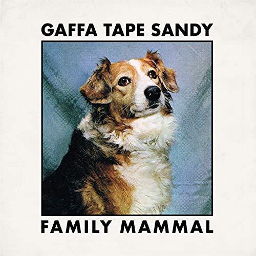 Gaffa Tape Sandy_Family Mammal