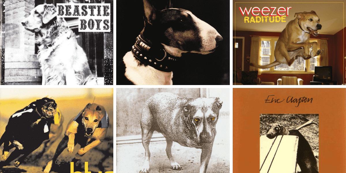 Pochettes d'albums avec des chiens